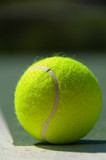 tennis balls on court poster