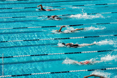 canvas print picture competitive swimming