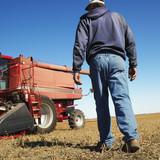 farmer walking toward combine. poster