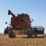 combine harvesting soybeans. poster