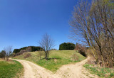 spring countryside - roads, bushes and blue sky poster
