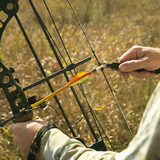 bow hunter hands on compound bow. poster