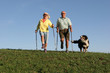 nordic walking ehepaar