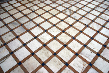 agra red fort  tiles