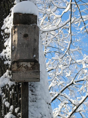 snow-covered nestling box