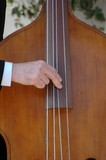 playing the contrabass