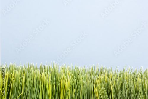 poster of strip of artificial green grass.