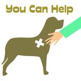 veterinarian poster poster