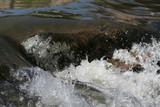 water rapids in river poster