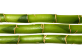 lucky bamboo poster
