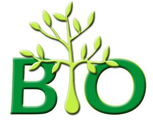 bio 03