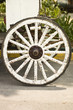 wheel of horse carriage