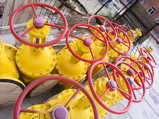 yellow valves 2
