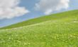 prairie ciel bleu
