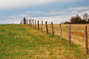 fence into horizon