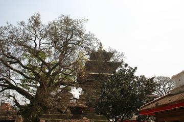 katmandu budda temple