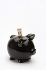 dollar piggy bank