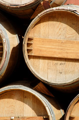 wine barrels on display