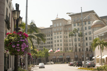 famous hotel in rodeo drive