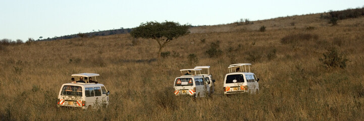 safari en 4x4
