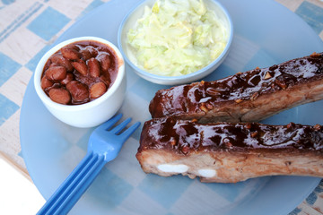barbecued spareribs 1