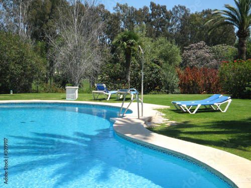 swimming pool with shade of palm tree de alison redfern photo libre de droits 3099117 sur