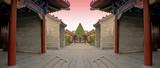 chinese combat arena 2