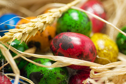 easter eggs in straw nest in basket