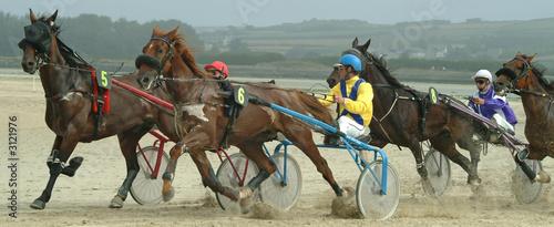Fotobehang Paardrijden course de chevaux