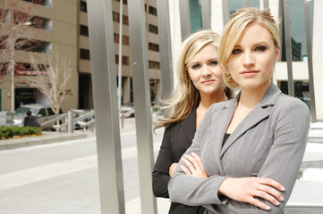 businesswoman partners