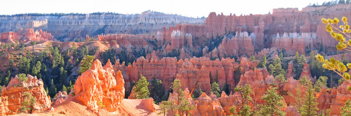 forest of red and white peaks, bryce national park, united state