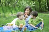 family picnic poster