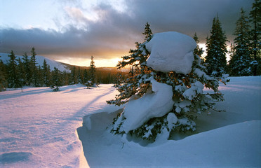 russia. south ural. mountain array iremel.