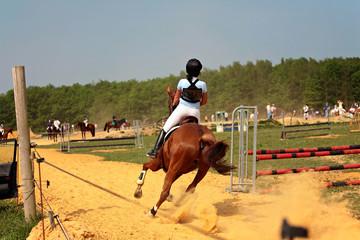 compétion à cheval