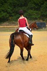 cavalier à cheval