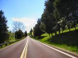 rural highway poster