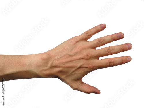 main gauche d 39 homme sur fond blanc de olivier salesse photo libre de droits 3157958 sur. Black Bedroom Furniture Sets. Home Design Ideas