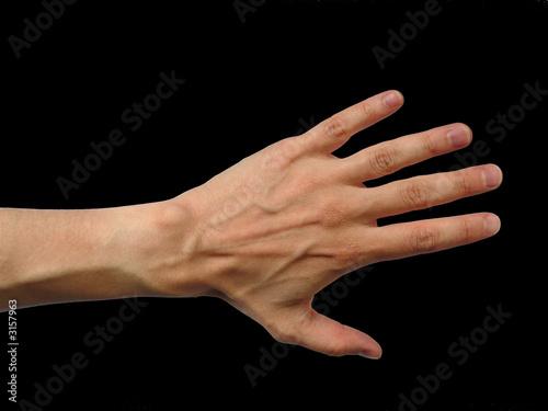 main gauche d 39 homme sur fond noir photo libre de droits sur la banque d 39 images. Black Bedroom Furniture Sets. Home Design Ideas