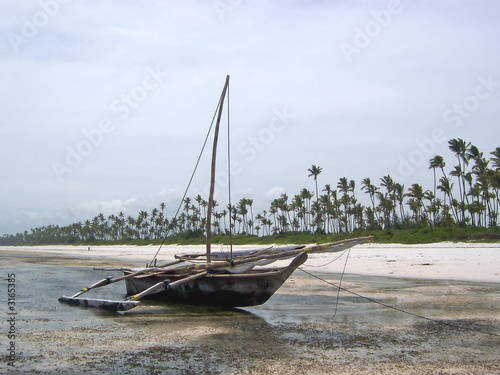 african boat on a tropical beach with palm trees in the backgrou