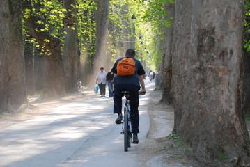 bike driving in long alley