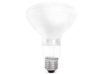 lâmpada erecta