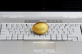 golden egg on a laptop / online profits poster