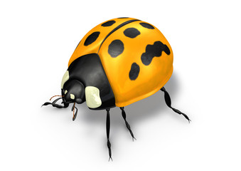 yellow ladybug with dots