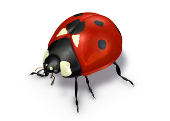 ladybug red with black dots