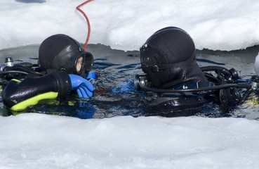two divers rising on the surface