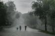 rainstorm - 3189918