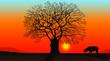 Leinwanddruck Bild africa