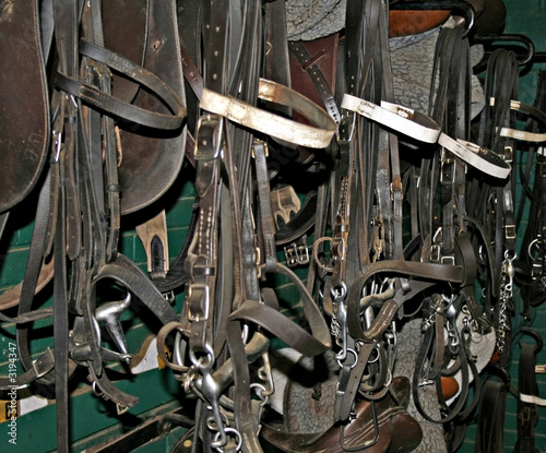 bridles and saddles