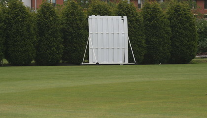 cricket screen