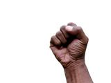 hand gesture - fist poster